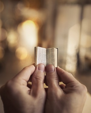 The Catechism Is a Small Book -- Only a Little Time Is Needed to Teach It